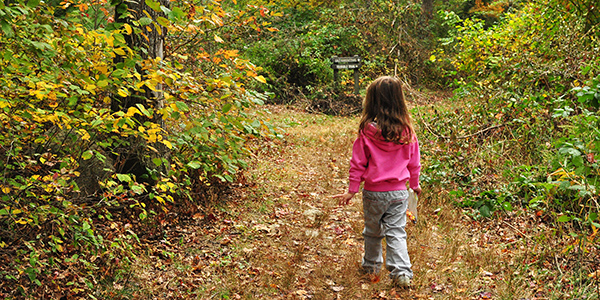 a child walks through the woods at Nasketucket Bay State Reservation