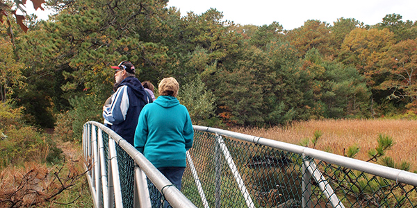 people walking across a bridge at the Lyman Reserve