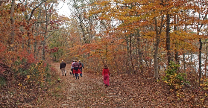 people walking down a trail in the woods